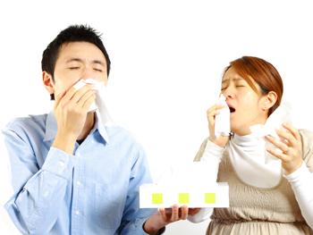 東洋医学による花粉症治療のご案内